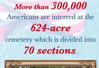Arlington Inforgraphic