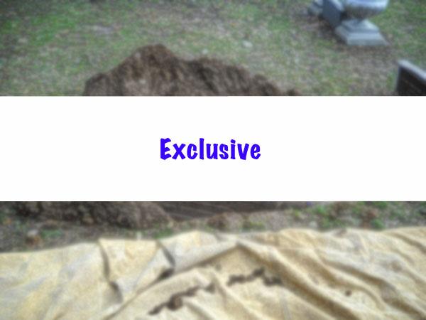 batesville_endura_burial_vault