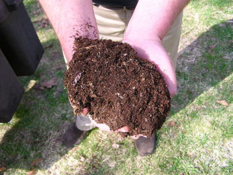 Compost (Photo by normanack/Creative Commons via Wikimedia)