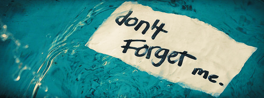 Dont-Forget-Me