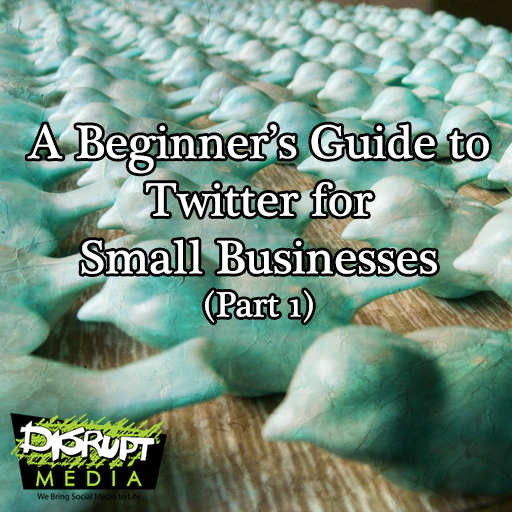 beginnerguidetotwitter