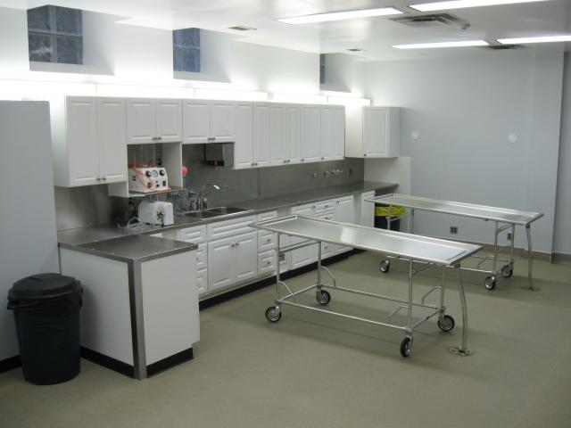 Embalming surprises tales of the preparation room Embalming room design