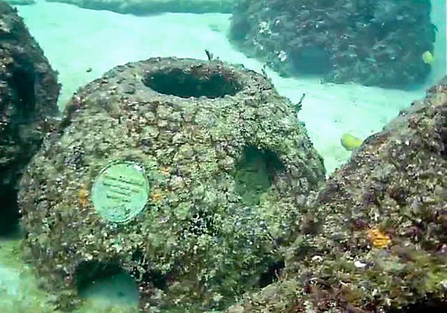 Memorial reefs