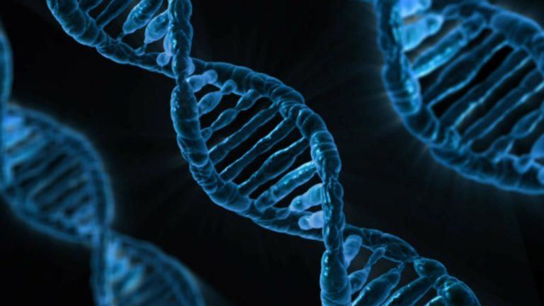 DNA Banking strand of DNA